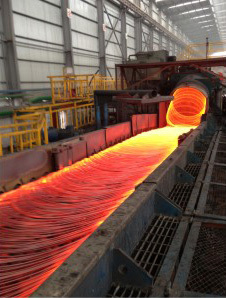 泸州鑫阳钒钛钢铁有限公司重组整合和升